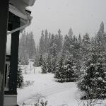  Fresh powder every day- 60cm of snow in 4 days!  This is the view from Casa Kettlewell.