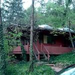 Forest Houses Resort Foto
