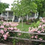 Mariposa Ranch Bed and Breakfast