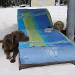 Jacomo and Blanca next to our beach chairs