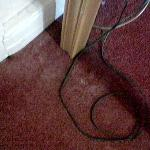 Dust on carpet & skirting