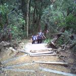 on way down Mount Kinabalu