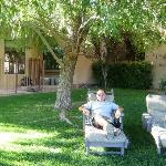 Relaxing under Arizona Willow outside our room
