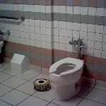You thought 2-holers went out with the Wild West? Check out T&D's women's room