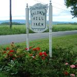 Baldwin Hill Farm Bed and Breakfast Foto