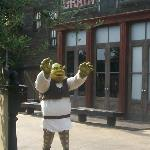 SHREK AT THE THEME PK