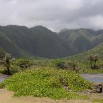 Down in the Valley in east Molokai