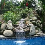 The pool and waterfall