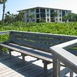 Tarpon Beach Condos