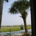 Marsh walk at Murrell's inlet