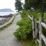 Ocean Trail, with one of the Pocupine Islands in background