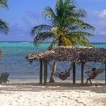 Photo of Little Cayman Beach Resort