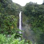 Akaka Falls State Park