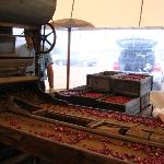  cranberry machine
