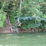 A really cool rope swing on the river