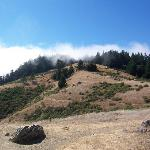 Mount Tamalpais State Park