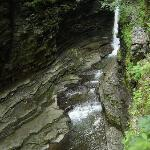 Gorge at Watkins Glen State Park
