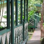 Φωτογραφία: Tortuguero Jungle Lodge