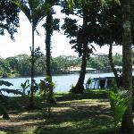 Tortuguero Jungle Lodge照片