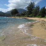Φωτογραφία: Hanalei Colony Resort