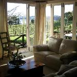Photo de Saltings Estate Vineyard Accommodation