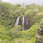 The Falls from a lookout point