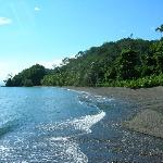 Playa Nicuesa Rainforest Lodgeの写真