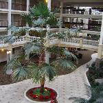 Embassy Suites Colorado Springs resmi