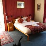 Queen Victoria room & resident cat