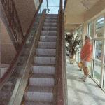 the only escalator in the bvi
