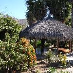 Palapa-covered platform for yoga, etc.