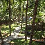 Kadaltheeram Ayurvedic Beach Resort照片