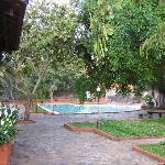  Pool area with garden