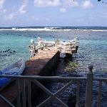The jetty and sun deck