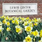 Lewis Ginter Botanical Garden