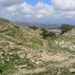  Cyrene