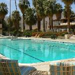 The Palms at Indian Head Desert Inn resmi