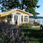 Photo of Clam Beach Cottage Bed and Breakfast  Saltspring Island