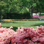 Sherwood Gardens