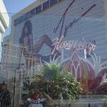 Toni's picture on the side of the Flamingo!