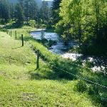 The trout stream that runs through the horse camp