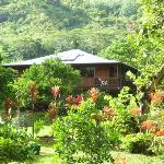 Photo de Makaleha Mountain Retreat