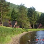 A view of the lodges from the loch shoreline.