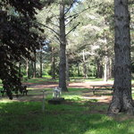 Foto Olema Campground