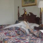 Foto Country Inn & Suites By Carlson, Lumberton