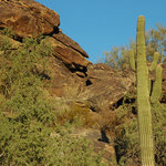South Mountain Park 1
