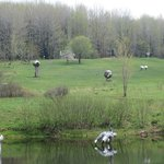 Griffis Sculpture Park