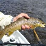 Big Trout Ranchの写真