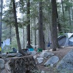 ‪Lodgepole Campground‬