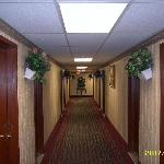 Red Carpet Inn Elmwood Park Foto